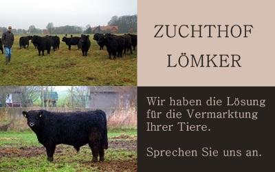 Zuchthof Lömker