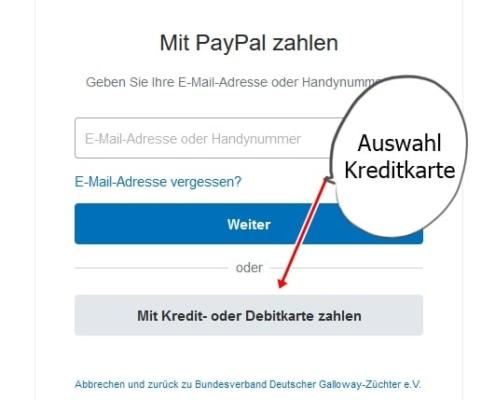 PayPal nach Klick auf Mit Kredit- oder Debitkarte zahlen