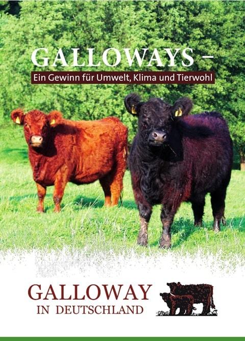 Galloway Image Broschüre 2021