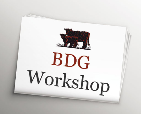 BDG WORKSHOP