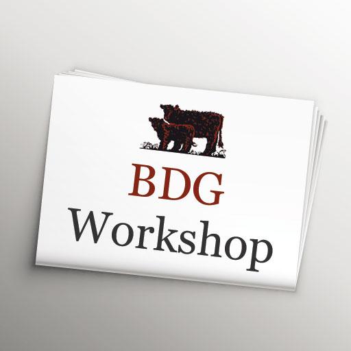 BDG WORKSHOP